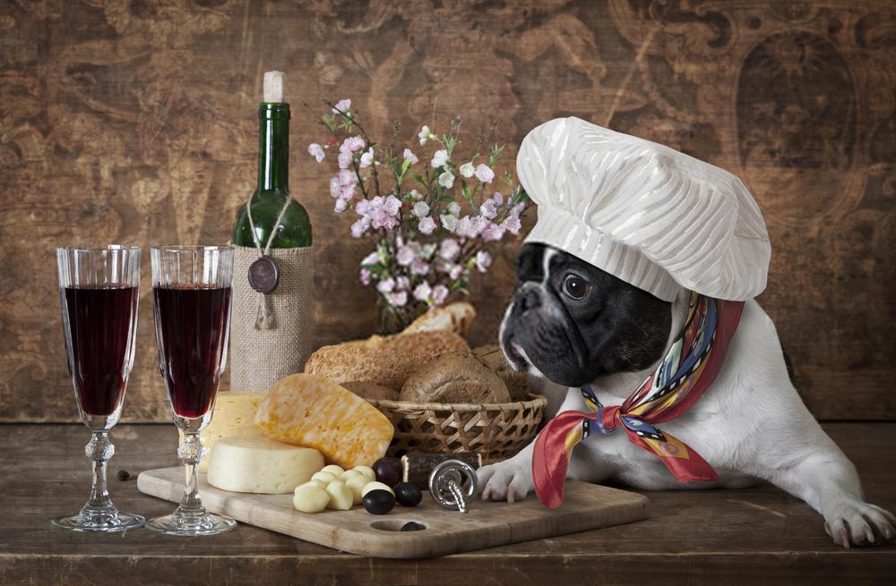 Migliori crocchette per Bulldog Francese